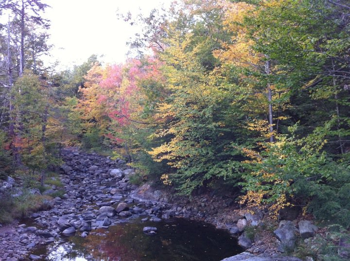 An autumn day in Colebrook on 9.23.2010 Photo Credit: Mike Valletta