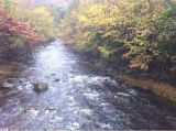 Peak Foliage Week in Litchfield County